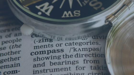 AgeWise Compas